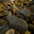 In lanzarote  isle foam rock landscape  stone    water — ストック写真