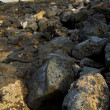 In lanzarote  isle foam rock spain landscape — ストック写真