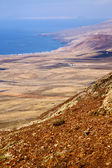 Coastline lanzarote spain africa and house field — Stock Photo