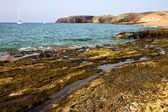 Light lanzarote spain coastline water summer — Stock Photo