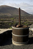 Press viticulture winery lanzarote spain la geria vine — Stock Photo