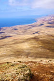 Coastline lanzarote view from the top and house field — Stock Photo