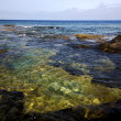 Spain  water coastline  in lanzarote  sky cloud beach — ストック写真