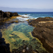 Froth coastline in lanzarote spain — Stock Photo
