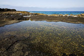 Coastline in lanzarote spain pond cloud beach water musk — Stock fotografie