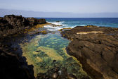Froth coastline in lanzarote spain — Stock fotografie