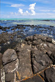 Foam indian ocean some stone the island — Stock Photo