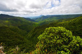 River mountain in mauritius — Stock Photo