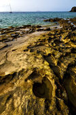 Rock beach water and summer in lanzarote spain — Stock Photo