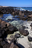 Sky light beach water in lanzarote isle foam rock — Stock fotografie