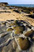 ランサローテ島スペインの海岸線石のビーチで — ストック写真