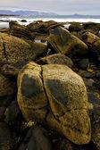 Eau la plage du bassin musc — Photo