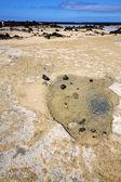 люди испании хилл желтый пляж спираль из черной скалы lanzar — Стоковое фото