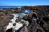 Sky light beach water in lanzarote isle foam rock spain lands — Stock fotografie