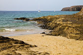 Spain musk pond beach water boa n lanzarote — Stock fotografie