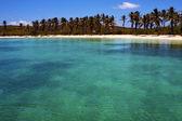 и рок в голубой лагуне отдыхать остров контой мексики — Стоковое фото