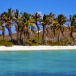 Stock Photo: Coastline rock in the blue lagoon relax isla contoy mexico