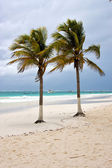 リラックスして、ブルーラグーンの楽園、ボート — ストック写真