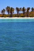 Coastline and isla contoy mexico — Stock Photo