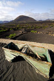 Crops viticulture winery lanzarote wall cultivation — Stock Photo