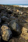 In lanzarote isle foam rock spain landscape stone — Stock Photo
