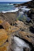 Salt in lanzarote isle foam rock spain — Stock Photo