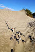 Yellow dune beach hil and mountain lanzarote spain — Stock Photo