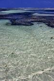 Litoral espuma espuma na lagoa azul — Fotografia Stock