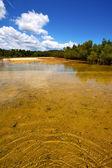 Pond coastline river the blue lagoon and bush madagascar nosy — Stock Photo