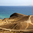 In lanzarote spain pond  r   coastline and summer in lanzarote — Stock Photo