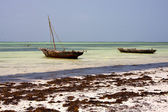 Afrika küste boot pirague lagune entspannen — Stockfoto