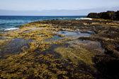Rock stone sky coastline and summer in lanzarote spain — Stock Photo