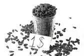 Seeds on the white background — Stock Photo