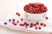 Red cornel in old-styled metal bowl placed on towel on light background — Stock Photo