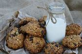 Oatmeal cookies and bottle of milk on canvas background — Stock Photo