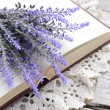 Bunch of lavender laying upon open book on vintage crocheted doi — Stock Photo #22527509