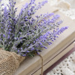 Bunch of lavender placed on book bundle — Stock Photo #22527573