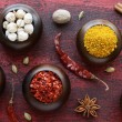 Set of various Indian spices on rusted wooden background — Stockfoto