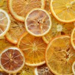 Dried orange and lemon slices background — Stock Photo