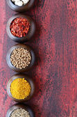 Set of wooden bowls with Indian spices — Stock Photo