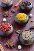 Set of various Indian spices on rusted wooden background — Stock Photo