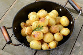 Whole fried young potato with rosemary — Stock Photo