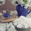 Still life in vintage style with meringue kisses and cherry flow — Stock Photo #25978815
