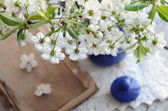 Cherry flowers bunch in blue pot and old book laying on vintage — Stock Photo