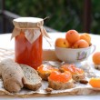 Breakfast with apricot jam, bread, fresh apricots and almonds — Stock Photo #26531687