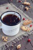 Cup of tea and cranberry biscotti — Foto Stock