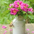Wild rose bouquet in old milk churn — Stock Photo