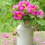 Wild rose bouquet in old milk churn — Stock Photo #28842545