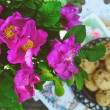 Wild rose bunch and homemade cookie — Stock Photo #28842881