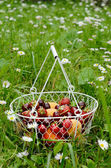 Fruit and berry mix in wire basket — Stock Photo